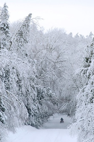 Orillia - An ATV Winter