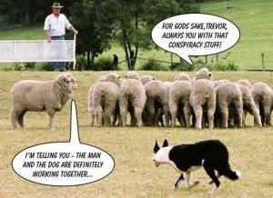 [Imagem: sheep.jpg?w=300&h=218]