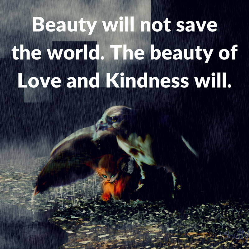 Beauty Will Not Save Quotes Area