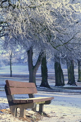 The Cold Seat