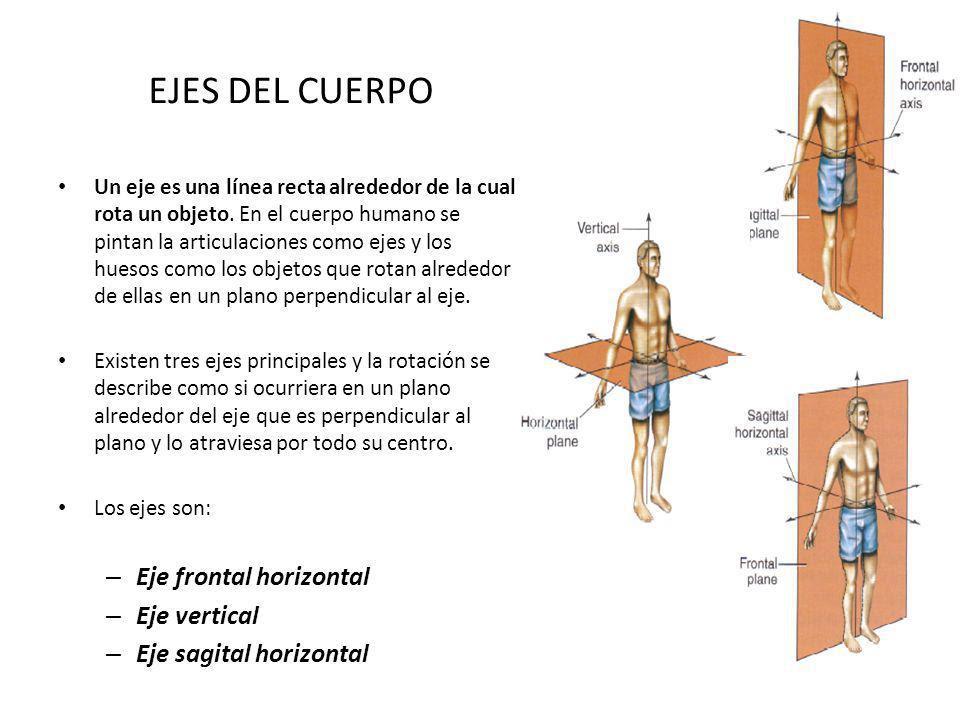 EJES+DEL+CUERPO+Eje+frontal+horizontal+Eje+vertical