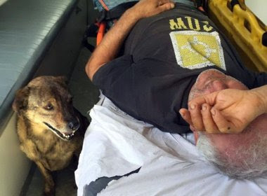 Cachorro 'reivindica' e consegue acompanhar dono em ambulância durante atendimento