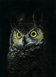 Colored pencil illustration on black board.©1999 Sandy Allnoc