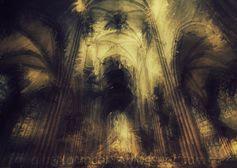 CATEDRAL DE FRIBURGO: SELVA EN PIEDRA // Recios pilares de fuste abigarrado como los troncos de umbría sala hipóstila donde las bóvedas nervadas en lo alto son como aquellas de intrincados ramajes; también vitrales hojarasca que filtra la luz incierta atravesando en fronda y el rosetón ¿simboliza asimismo el atavismo de aquel claro en floresta que reunía en rueda guerreros en consejo?…también la música, por siempre aquí la música, cual…(Ver en➦) http://albertotroconiz.blogspot.co