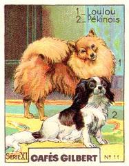 gilbert chiens001