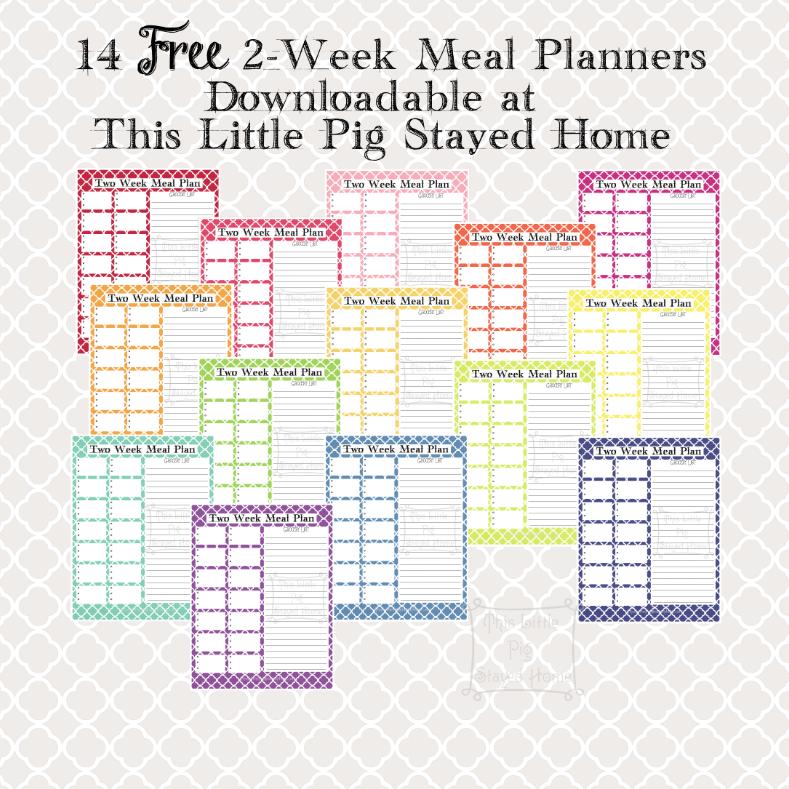 2 week planner - Guy weight loss