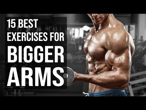 15 Best Exercises for Bigger Arms