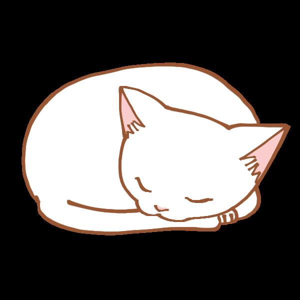 寝る猫のイラスト かわいいフリー素材が無料のイラストレイン