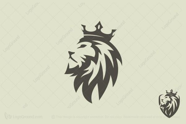 lion logo design Gallery