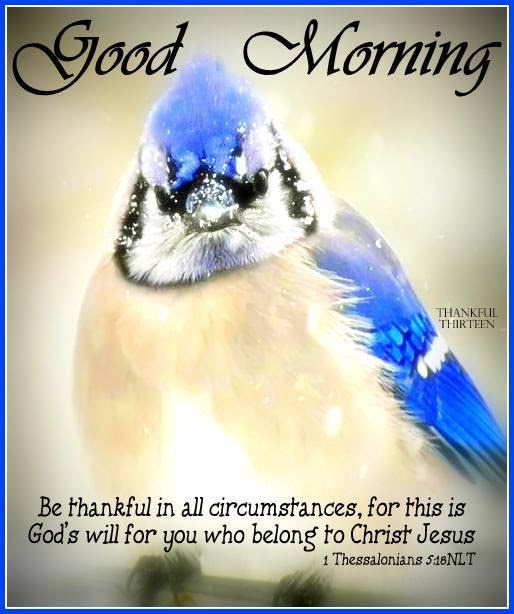 Religious Good Morning Quote About Being Thankful Pictures Photos