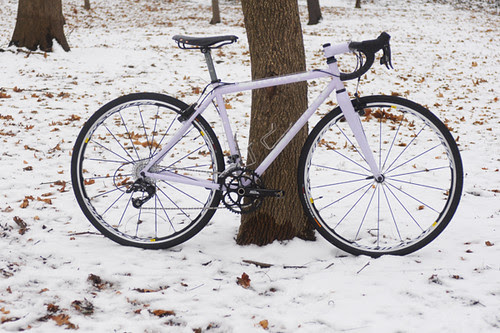 Honey Cyclocross, Winter Lilac