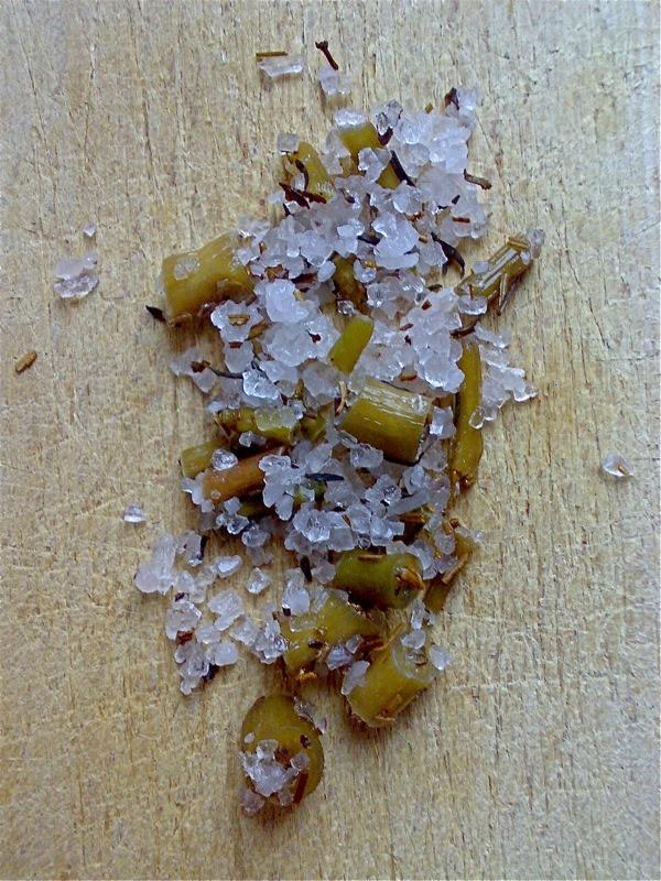 portulaca sotto sale - salted purslane