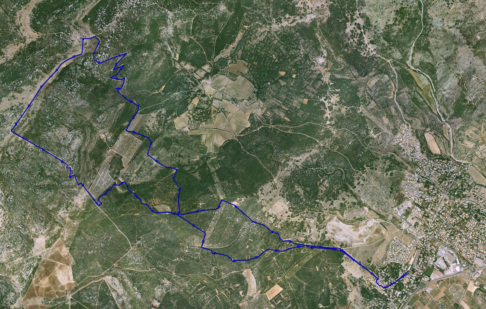 parcours_course_15_trail_cournonsec