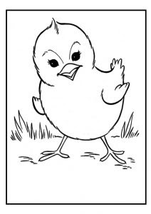 animal coloring pages for kids  preschool and kindergarten