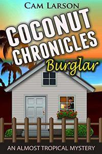 Burglar by Cam Larson