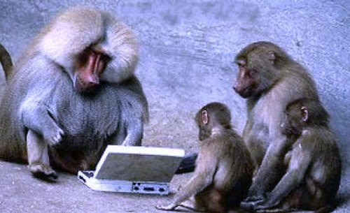 monkeys-and-typewriters