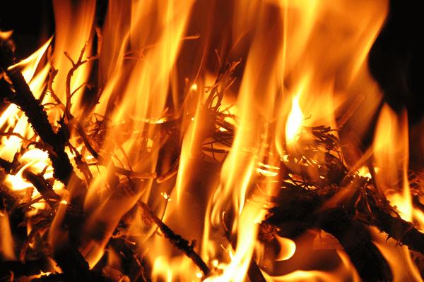 Aguiluchos incendian parque disgustados por derrota ante Tigres del Licey