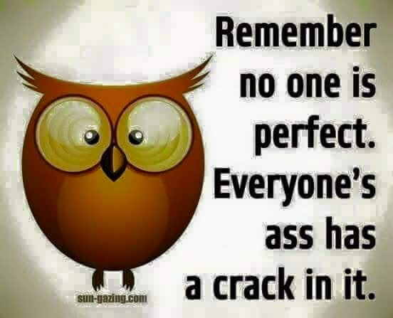 No One Is Perfect Quote
