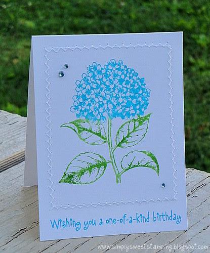 Happy Birthday Hydrangea