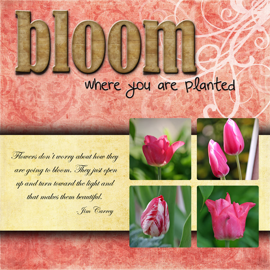 Quotes About Full Bloom 47 Quotes