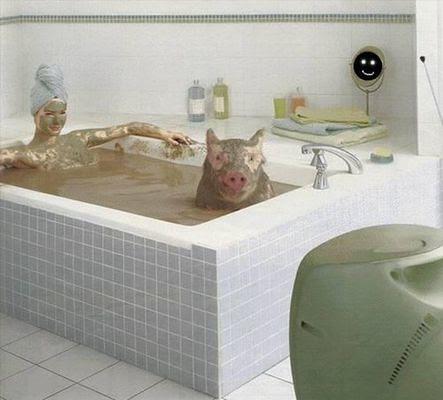 Lady & pig in mud bath