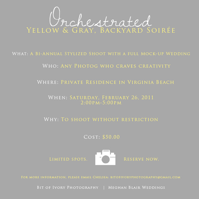 Orchestrated yellow and gray wedding photographers stylized shoot