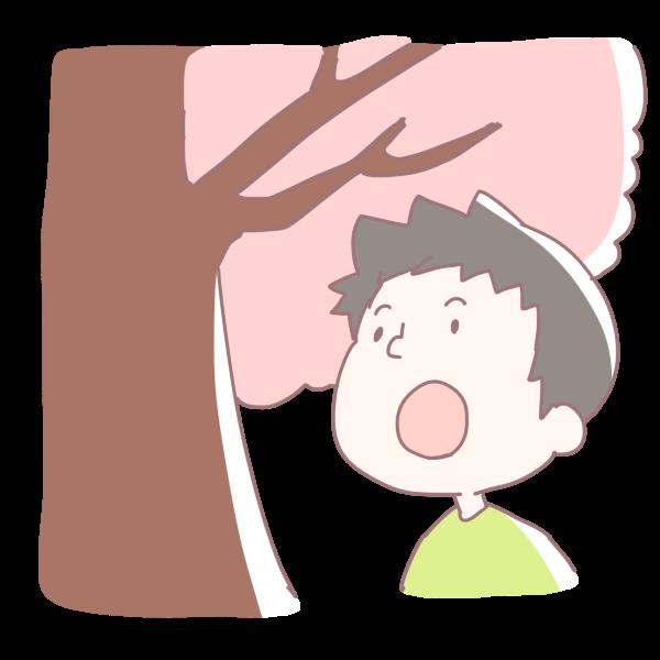 桜を見上げる男の子のイラスト かわいいフリー素材が無料のイラストレイン