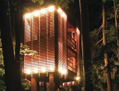 http://blog.josephtreeservice.com/wp-content/uploads/2008/08/maintreehouse1.jpg