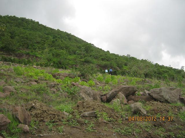 Cut, Demolished & Destroyed Hill of XRBIA Hinjewadi Pune - Nere Dattawadi, on Marunji Road, approx 7 kms from KPIT Cummins at Hinjewadi IT Park - 74