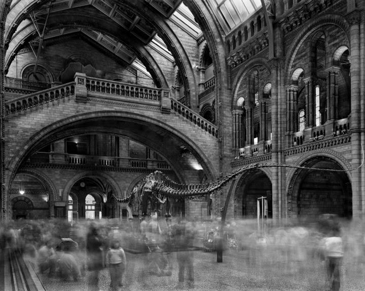 foule musee 03 La foule des musées  photographie bonus art