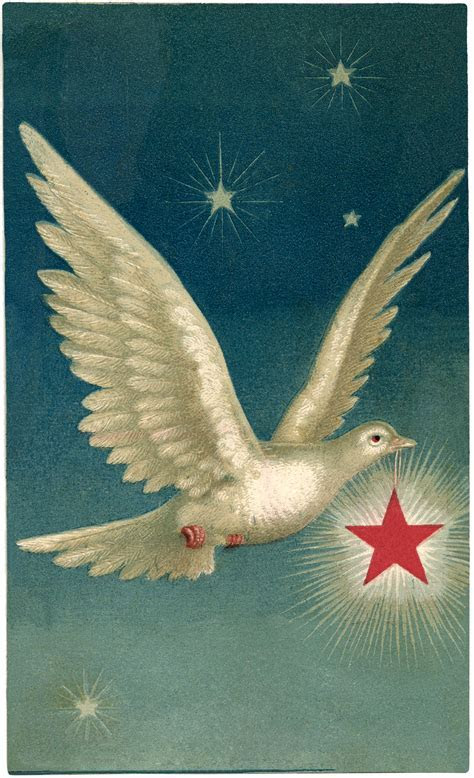 Beautiful Dove with Star Images!   The Graphics Fairy