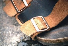 1999-08 Snoqualmie.jpg Birks (1)