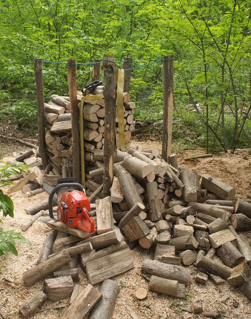 DSC_6590 chainsaw and logs