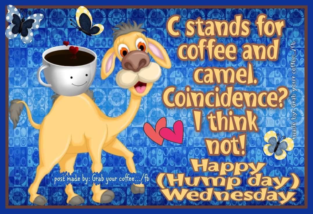 Happy Hump Day Wednesday Pictures Photos And Images For Facebook Tumblr Pinterest And Twitter