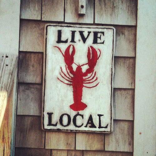 I love connecticut lobster by la casa a pois