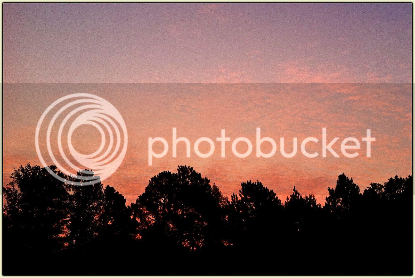 Rosy-Fingered Dawn