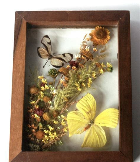 Vintage Glass Butterfly Shadow Box in Wood Frame   Made in