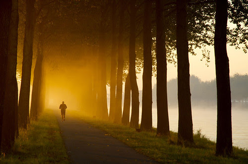 Morning Jog por buteijn