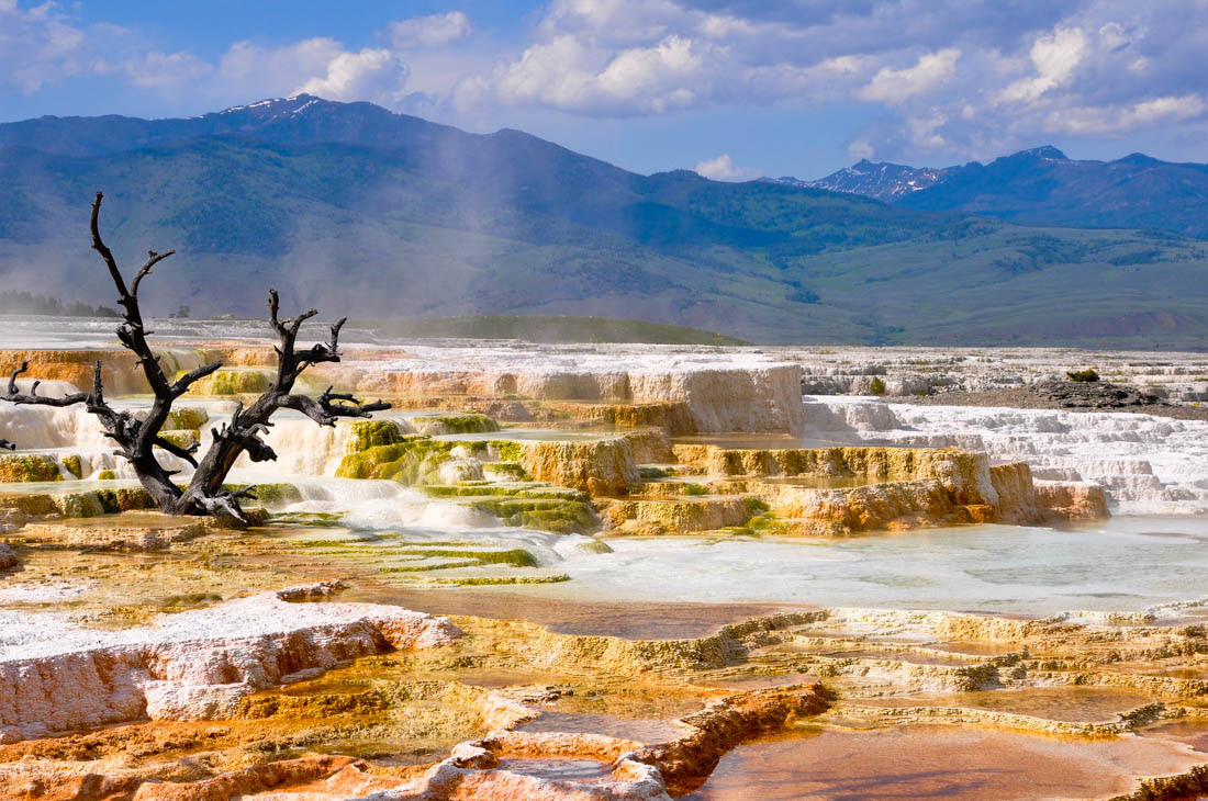 Yellowstone National Park Travel Costs & Prices - Old ...