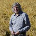 Tim Schultz, part of the third generation of Lundberg Family Farms's owners, in a rice field in Richvale, Calif.