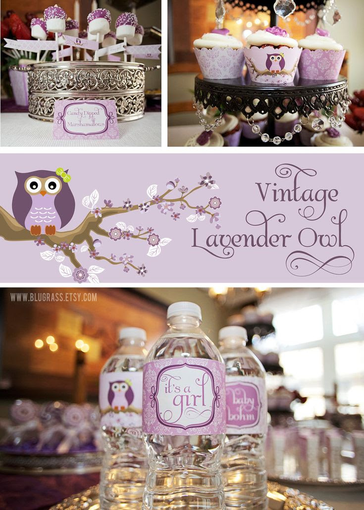 Purple Owl Baby Shower Decorations Baby Interior Design