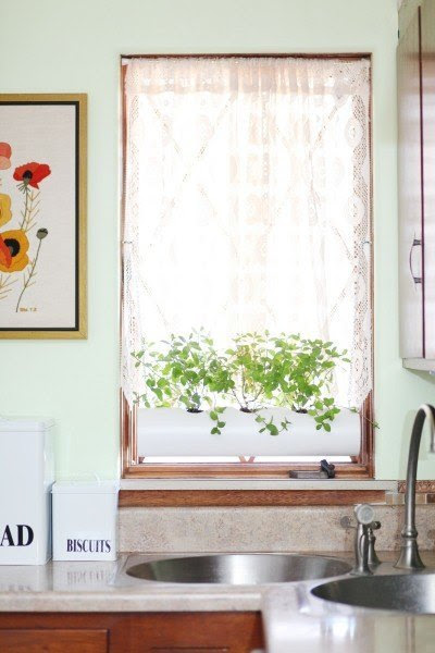 windowplanter