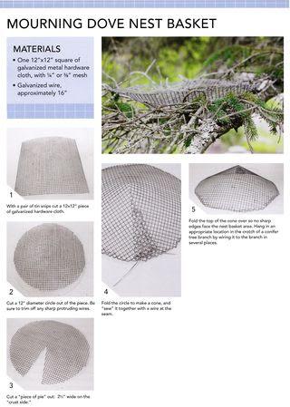 Mourning-dove-nest-basket