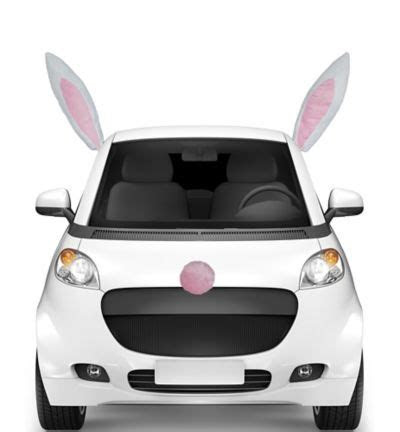 Easter Bunny Car Decorating Kit   Party City