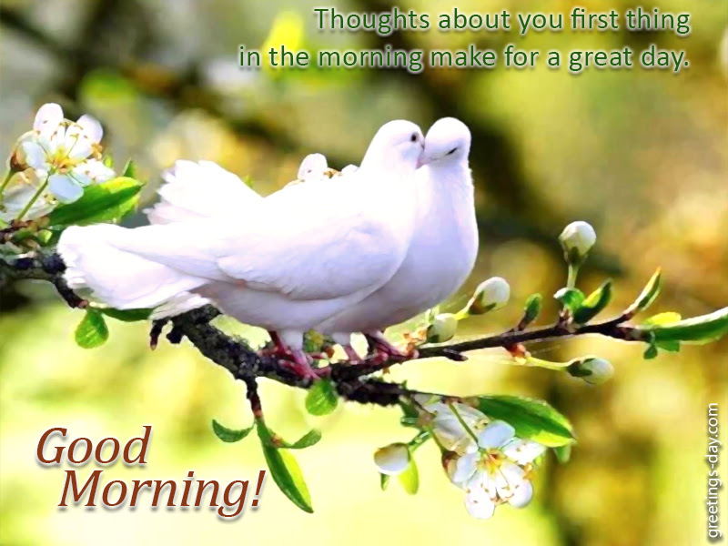 Greeting Cards For Every Day Love Quotes On Good Morning