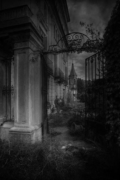 Who doesn't love a dark and deserted house? A house that holds no people but only memories. Memories of lives that have passed through its walls. Walk through its old fence to its overgrown yard. Sounds are coming from inside. Shadows are moving through the yard. Maybe this house isn't as deserted as we assumed. End House holds more than memories. It may be holding spirits who should have been long gone. The Dead Game by Susanne Leist http://www.amazon.com/author/susanneleist