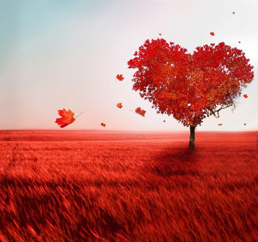 Resultado de imagen para el amor es ciego