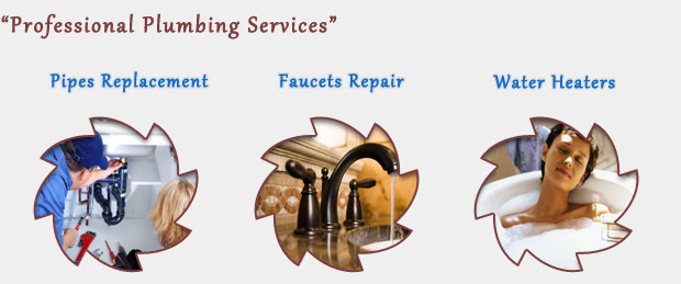 profissional services