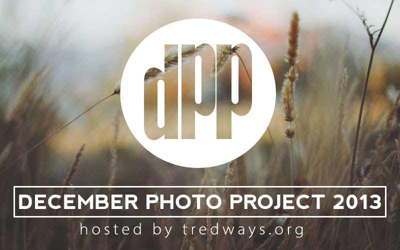 December Photo Project 2013