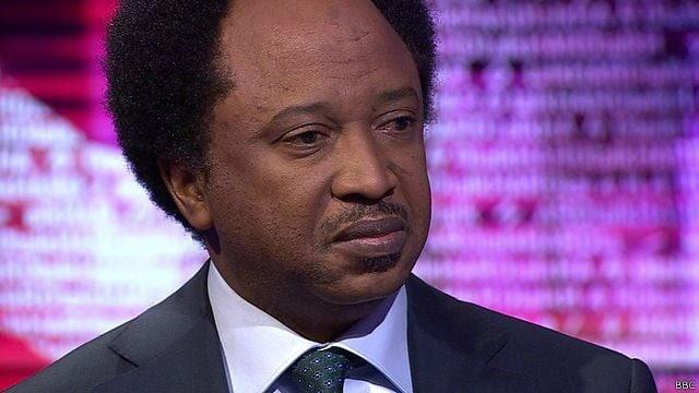 Maina: PDP govt hosted corruption, APC sweeping menace under the carpet – Shehu Sani